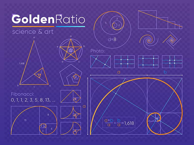 GOLDEN RATIO的圖片搜尋結果