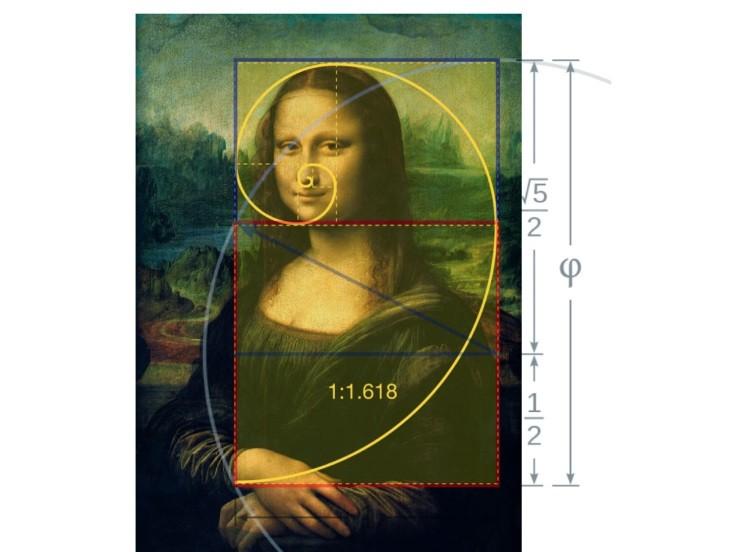 黃金比例的圖片搜尋結果
